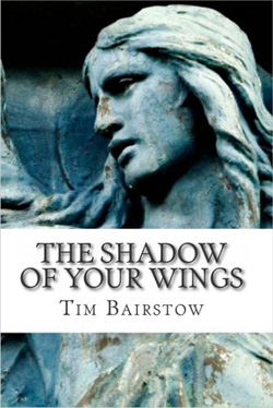 image-of-the-shadow-of-your-wings-tim-bairstow