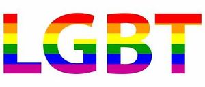 LGBT Youth Organizations