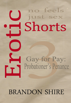 Gay for Pay: Probationer's Penance