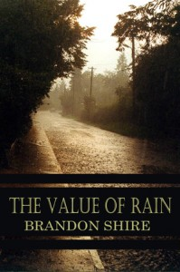 gay fiction - the value of rain